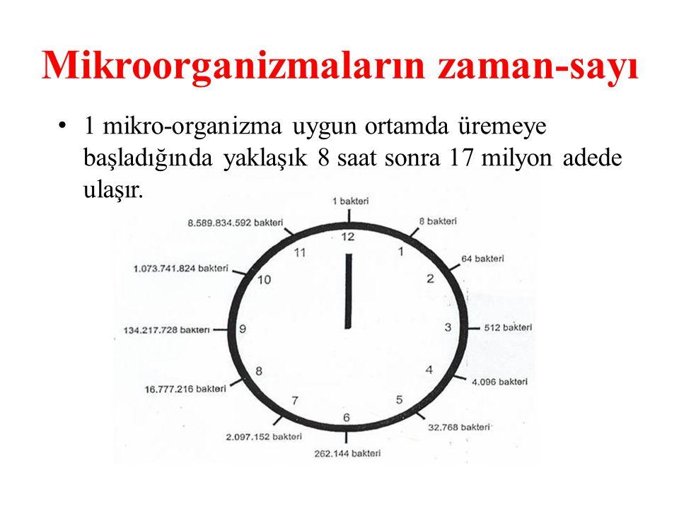Mikroorganizmaların zaman-sayı