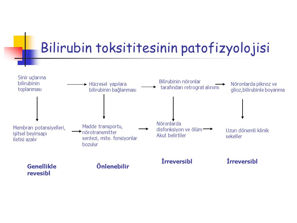 Bilirubin toksititesinin patofizyolojisi