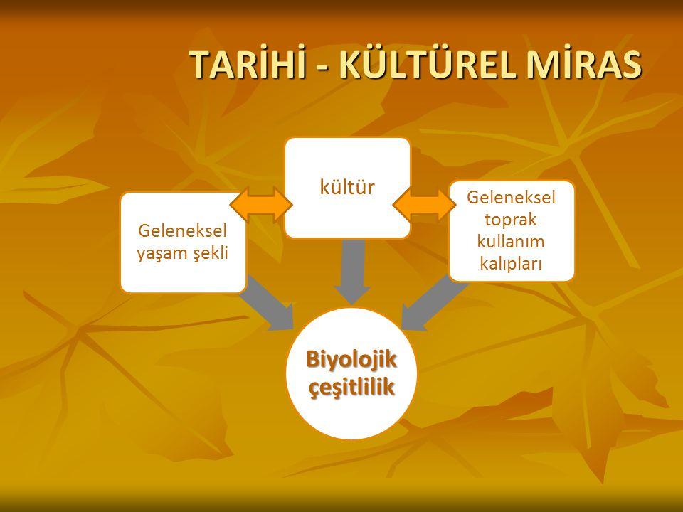 TARİHİ - KÜLTÜREL MİRAS