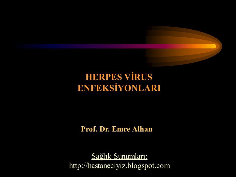 HERPES VİRUS ENFEKSİYONLARI