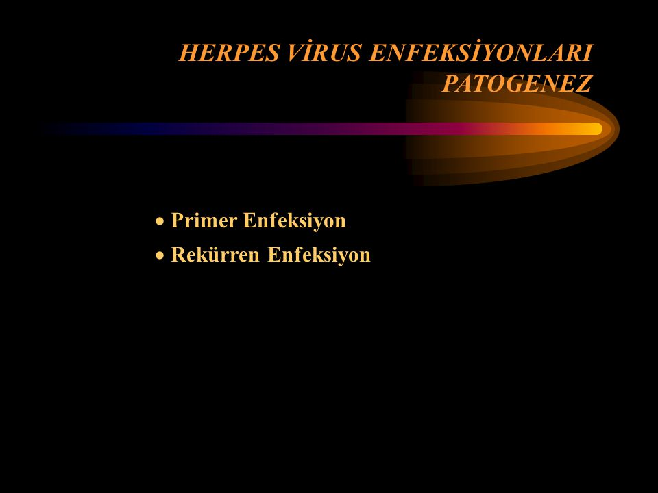 HERPES VİRUS ENFEKSİYONLARI PATOGENEZ