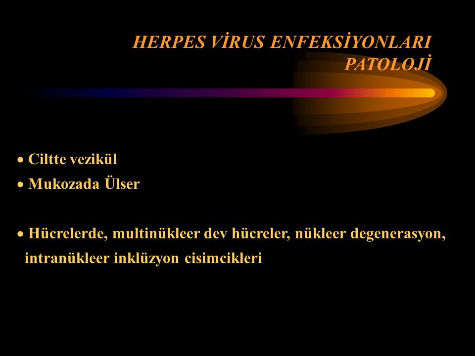 HERPES VİRUS ENFEKSİYONLARI PATOLOJİ