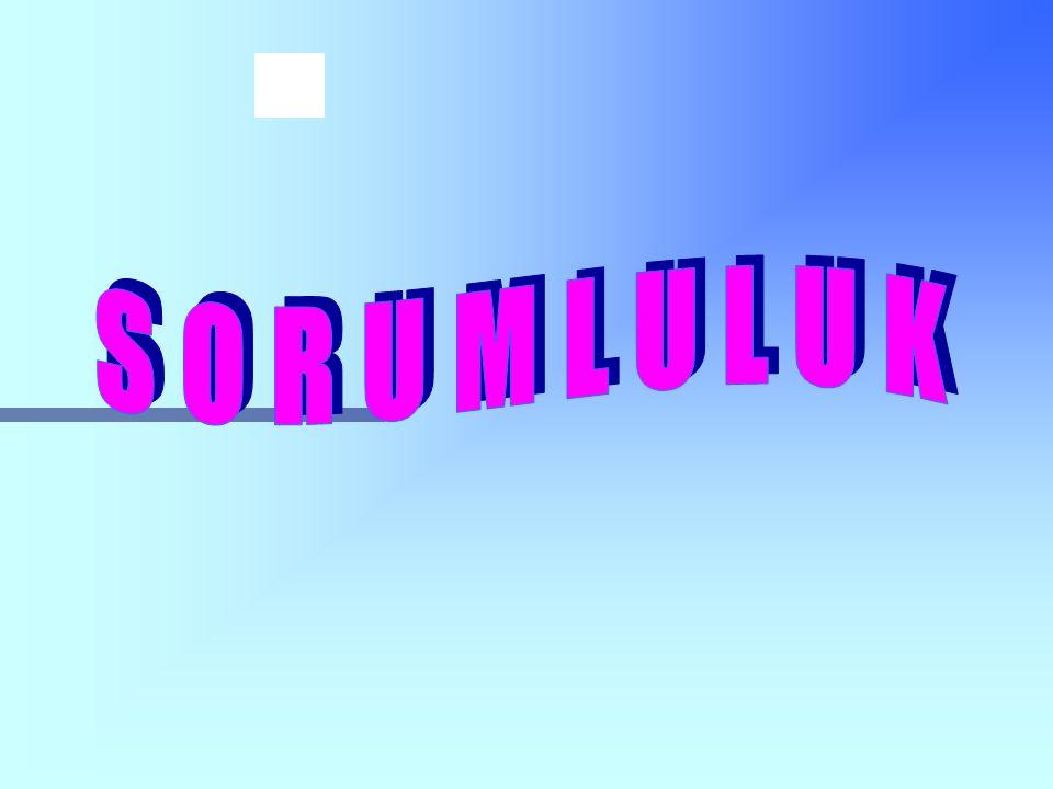 SORUMLULUK