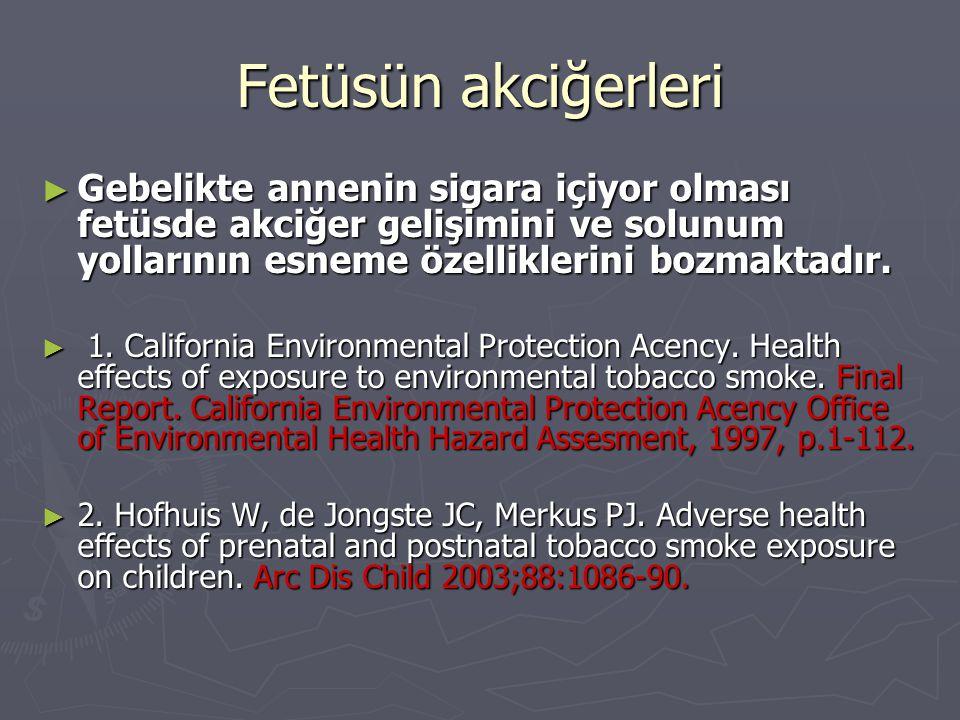 Fetüsün akciğerleri Gebelikte annenin sigara içiyor olması fetüsde akciğer gelişimini ve solunum yollarının esneme özelliklerini bozmaktadır.