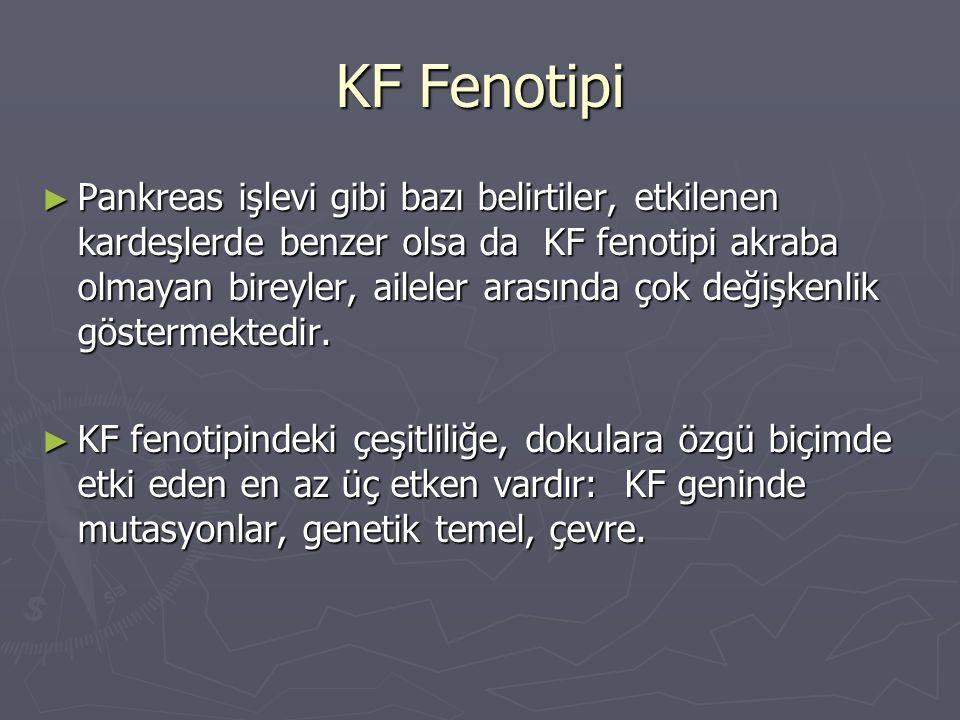 KF Fenotipi