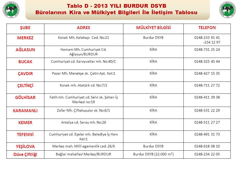 Tablo D - 2013 YILI BURDUR DSYB