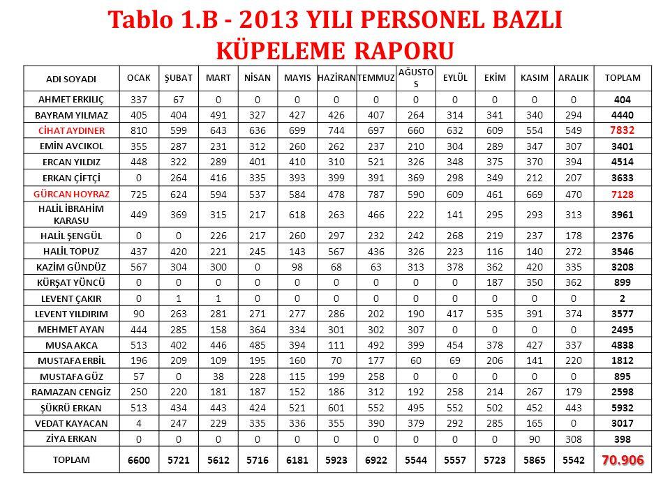 Tablo 1.B - 2013 YILI PERSONEL BAZLI KÜPELEME RAPORU