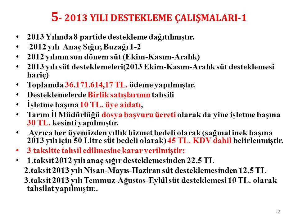 5- 2013 YILI DESTEKLEME ÇALIŞMALARI-1