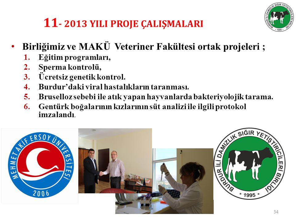 11- 2013 YILI PROJE ÇALIŞMALARI