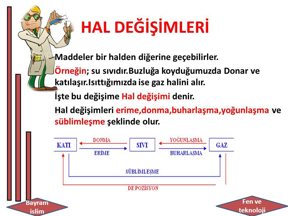 HAL DEĞİŞİMLERİ