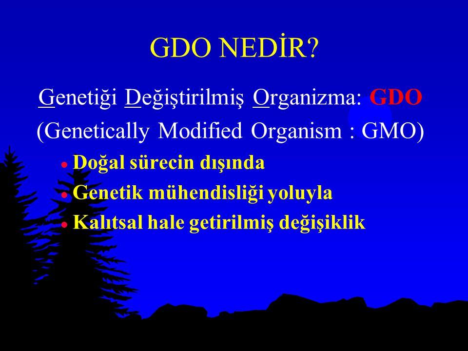 GDO NEDİR Genetiği Değiştirilmiş Organizma: GDO