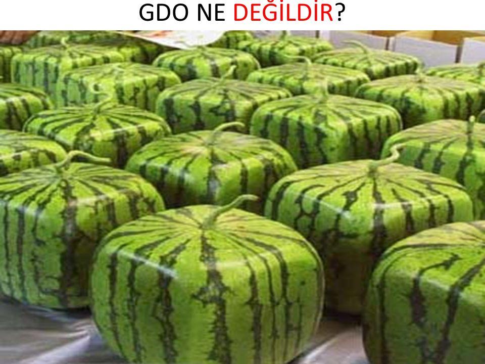 GDO NE DEĞİLDİR