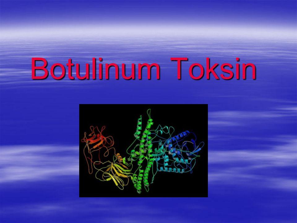 Botulinum Toksin