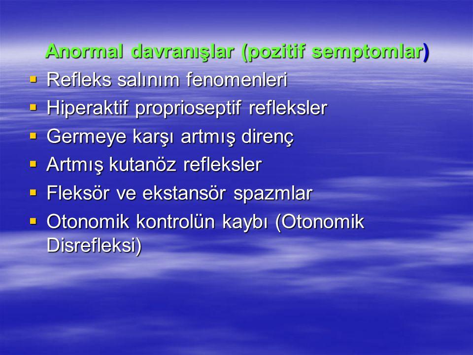 Anormal davranışlar (pozitif semptomlar)