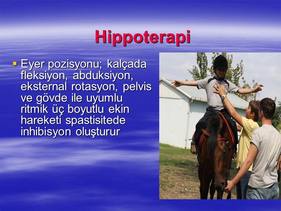 Hippoterapi