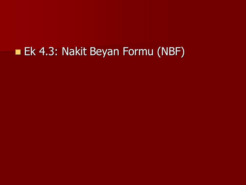 Ek 4.3: Nakit Beyan Formu (NBF)