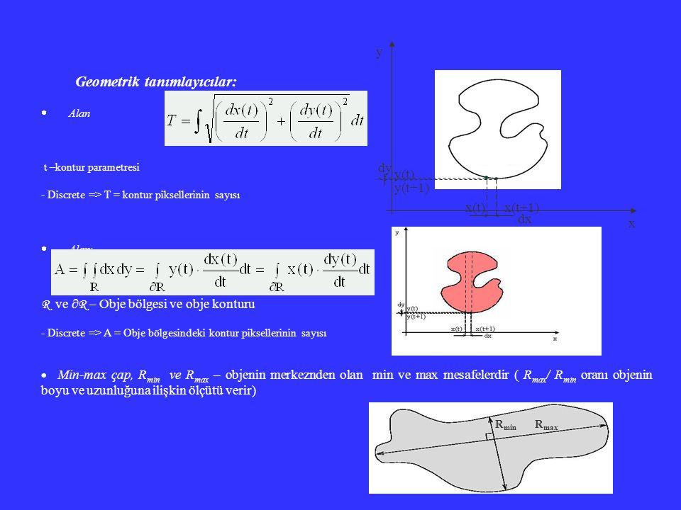Geometrik tanımlayıcılar: