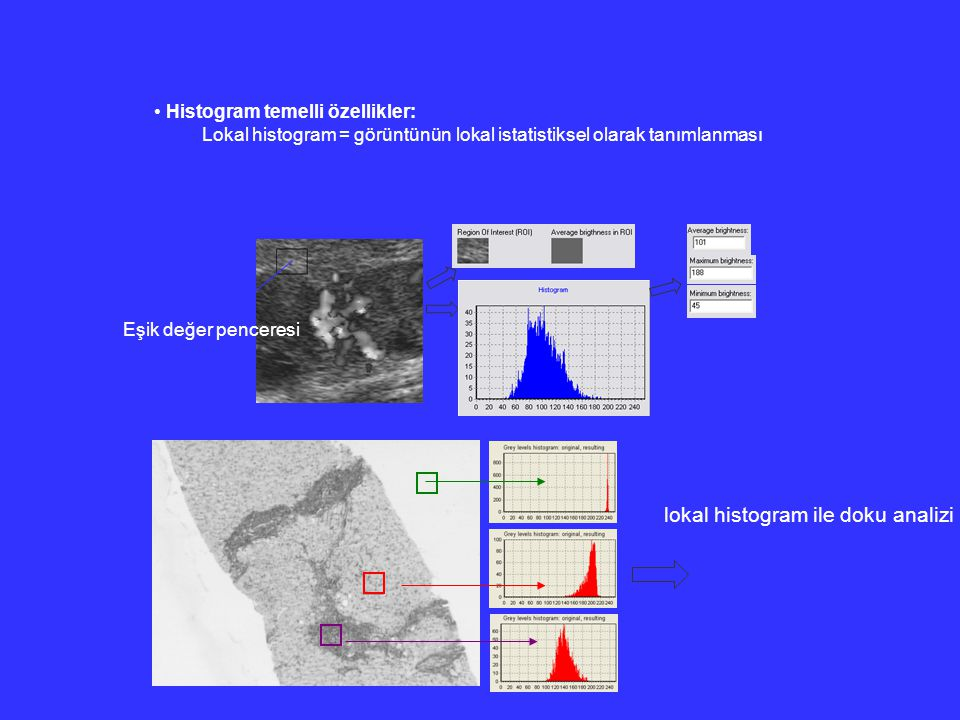 lokal histogram ile doku analizi