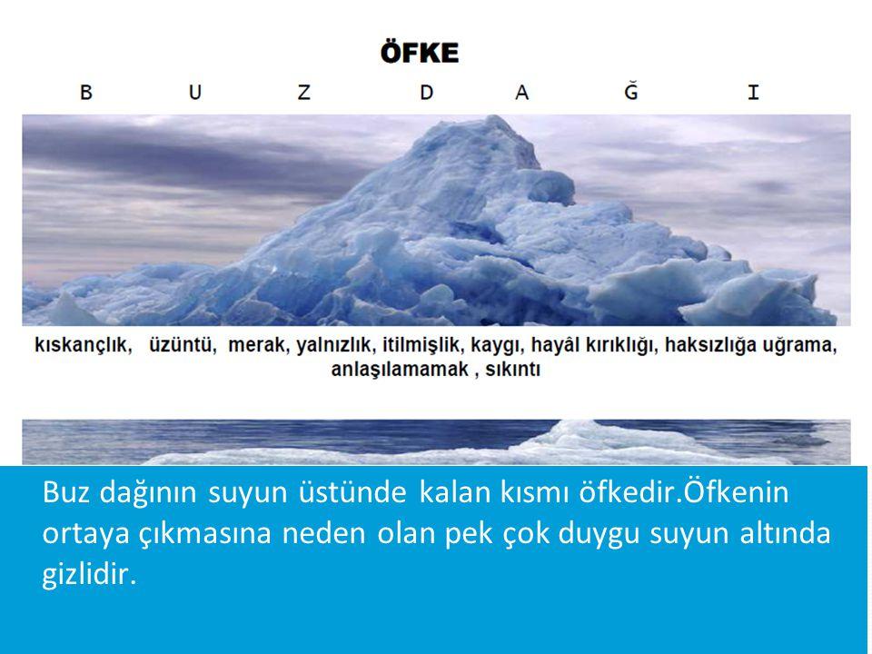 Buz dağının suyun üstünde kalan kısmı öfkedir