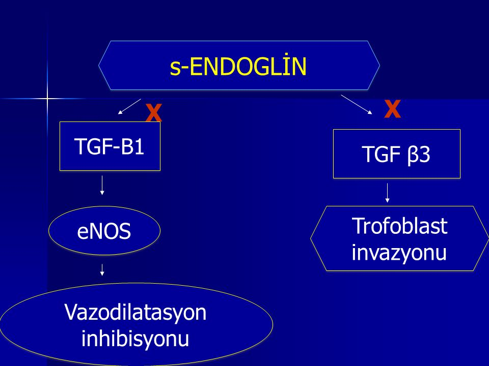 Vazodilatasyon inhibisyonu