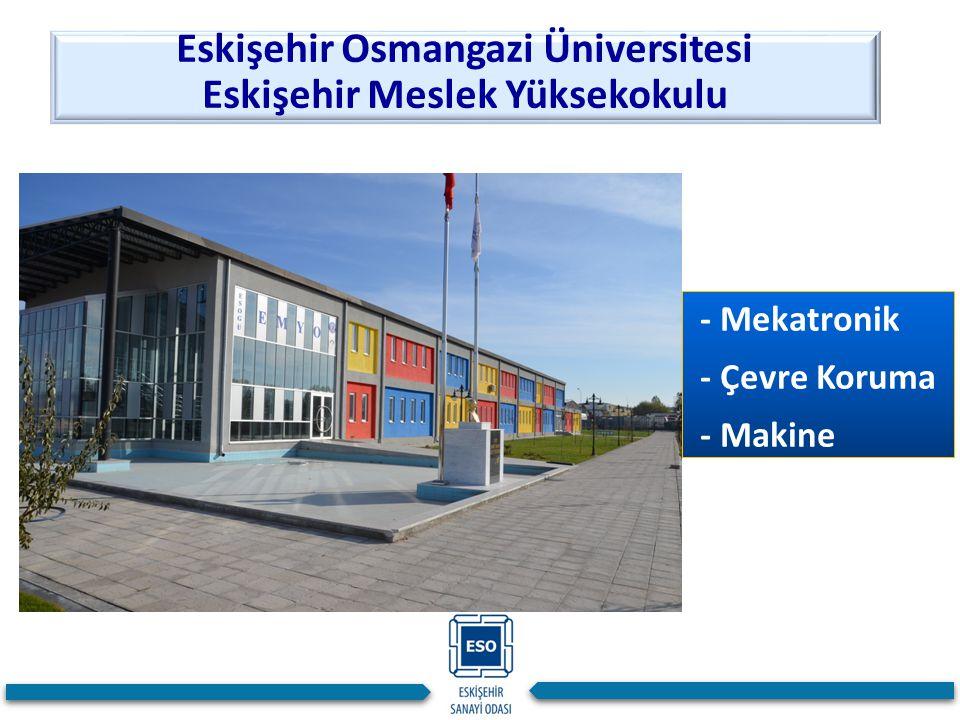 Eskişehir Osmangazi Üniversitesi Eskişehir Meslek Yüksekokulu