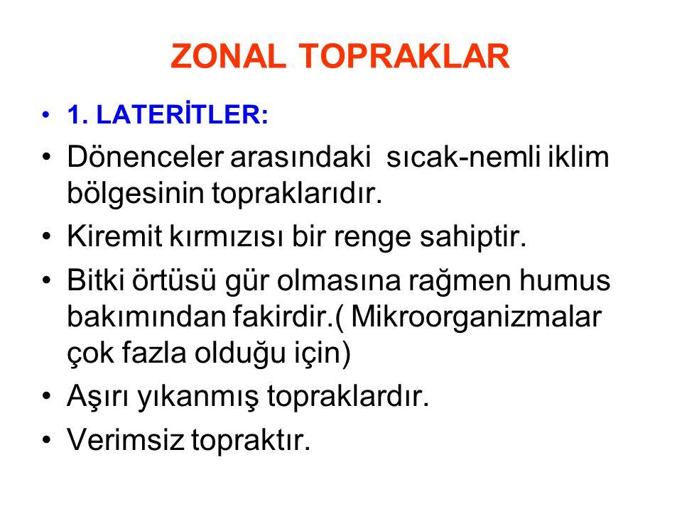 ZONAL TOPRAKLAR 1. LATERİTLER: Dönenceler arasındaki sıcak-nemli iklim bölgesinin topraklarıdır.