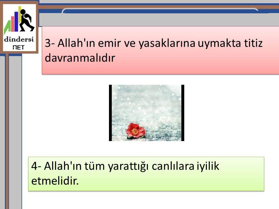 3- Allah ın emir ve yasaklarına uymakta titiz davranmalıdır
