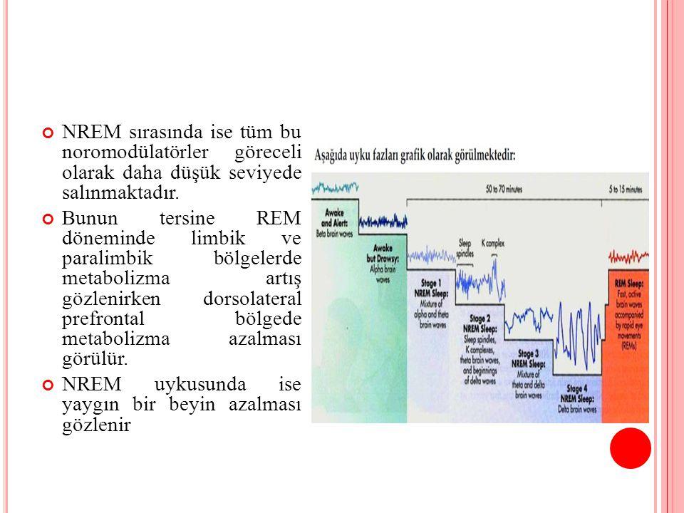 NREM sırasında ise tüm bu noromodülatörler göreceli olarak daha düşük seviyede salınmaktadır.