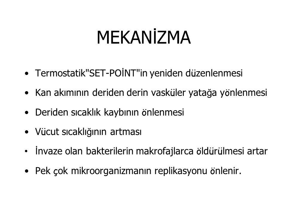 MEKANİZMA Termostatik SET-POİNT in yeniden düzenlenmesi