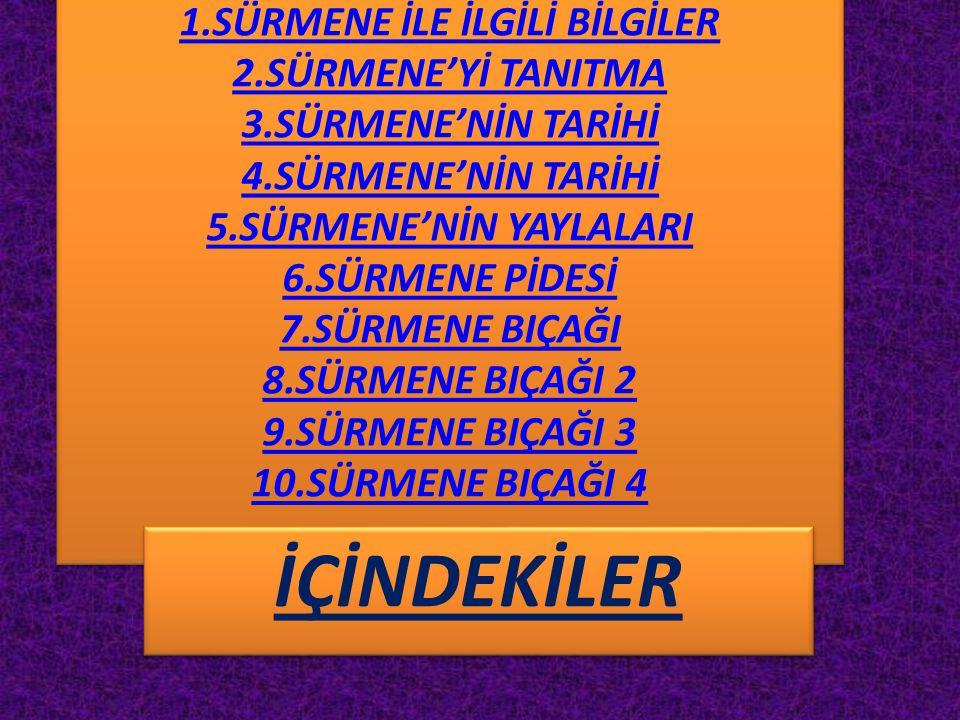 1. SÜRMENE İLE İLGİLİ BİLGİLER 2. SÜRMENE'Yİ TANITMA 3