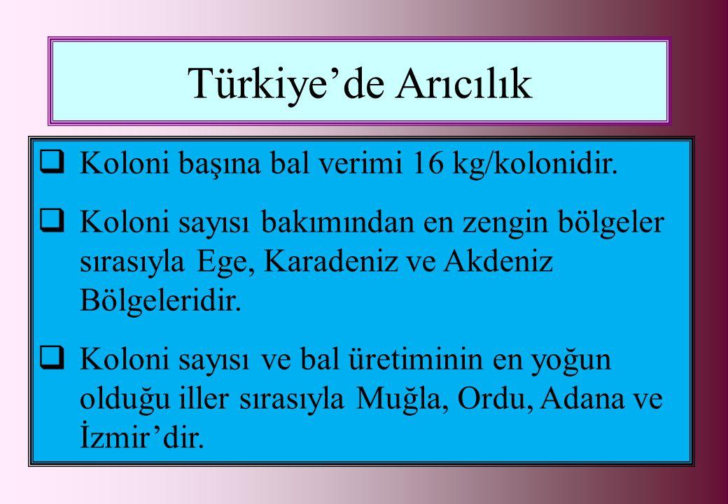 Türkiye'de Arıcılık Koloni başına bal verimi 16 kg/kolonidir.