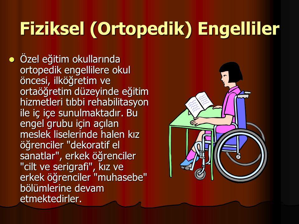 Fiziksel (Ortopedik) Engelliler
