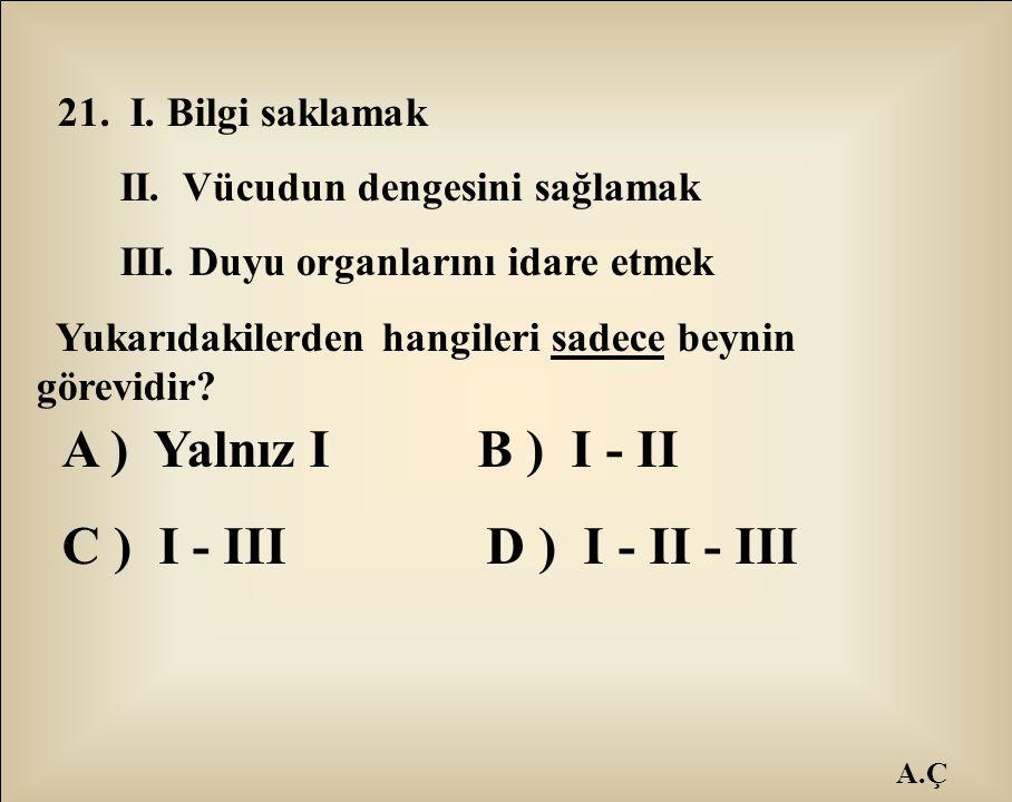 A ) Yalnız I B ) I - II C ) I - III D ) I - II - III