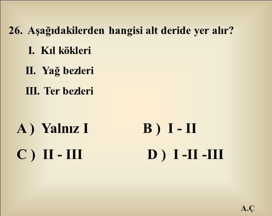 A ) Yalnız I B ) I - II C ) II - III D ) I -II -III
