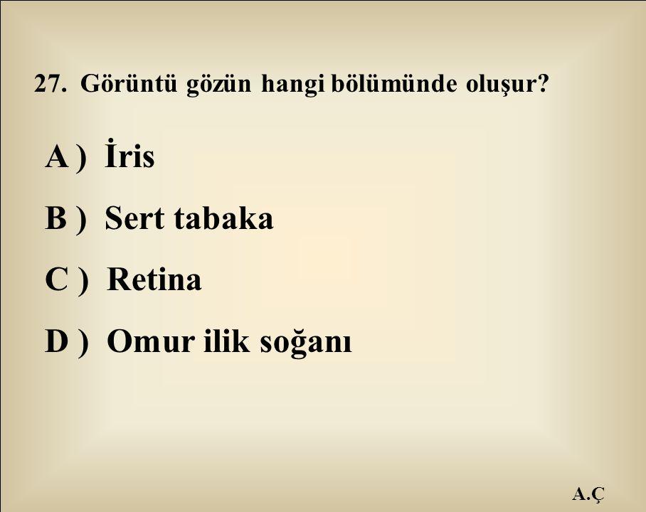 A ) İris B ) Sert tabaka C ) Retina D ) Omur ilik soğanı