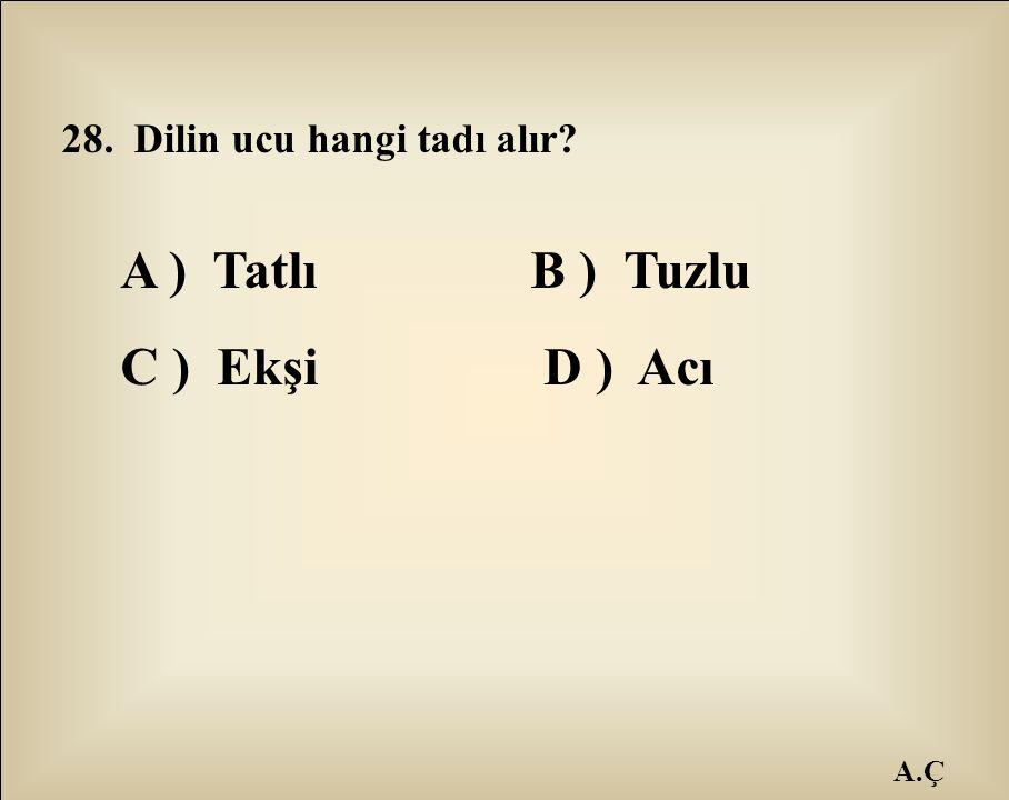A ) Tatlı B ) Tuzlu C ) Ekşi D ) Acı 28. Dilin ucu hangi tadı alır