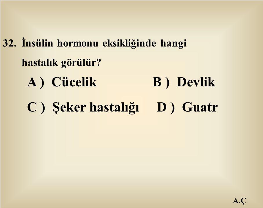 C ) Şeker hastalığı D ) Guatr