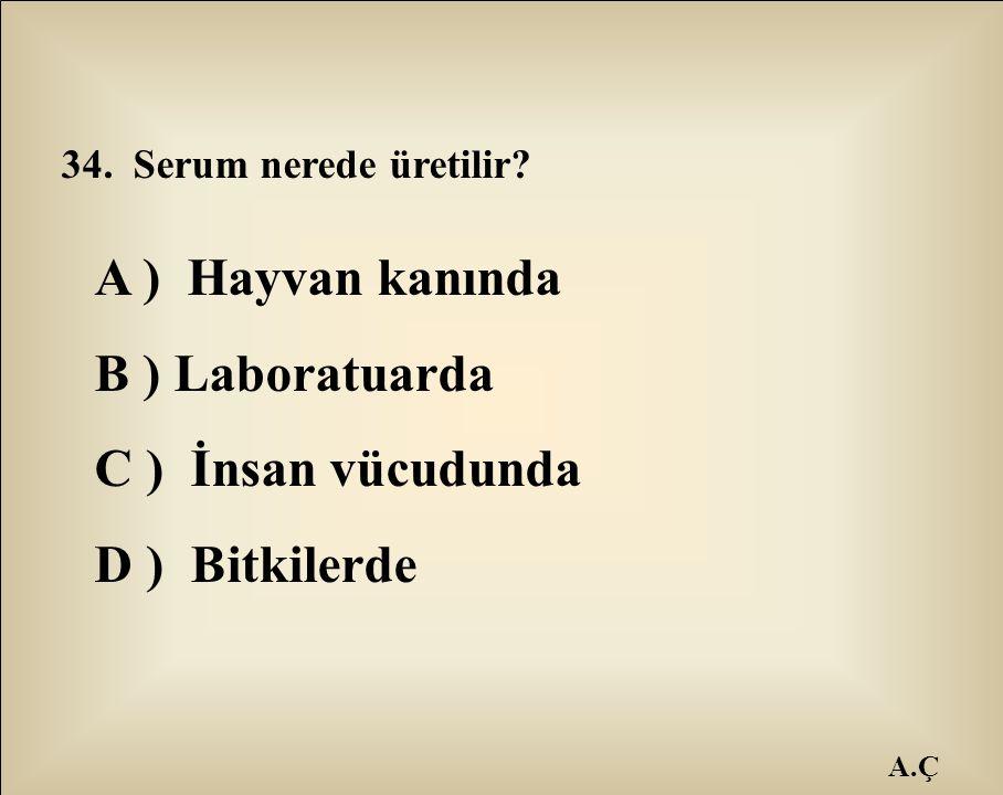 A ) Hayvan kanında B ) Laboratuarda C ) İnsan vücudunda D ) Bitkilerde