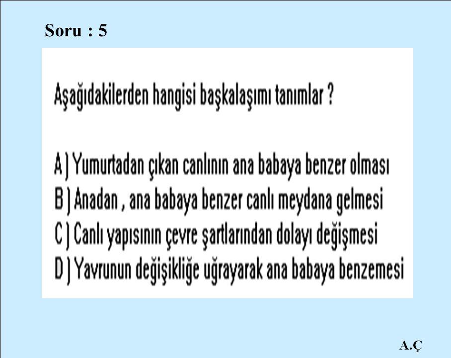 Soru : 5 A.Ç