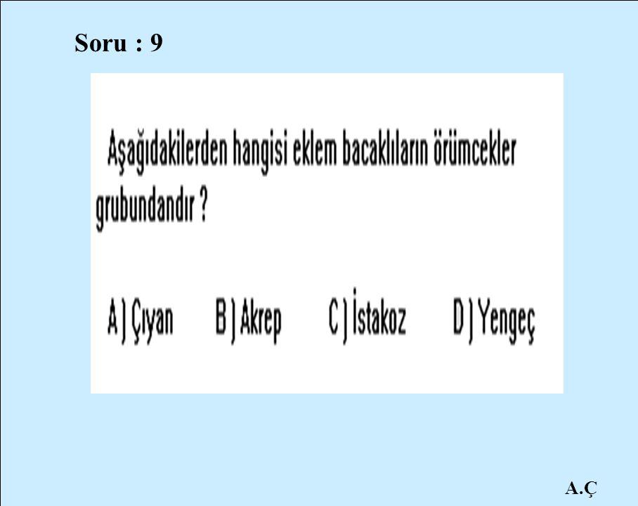 Soru : 9 A.Ç
