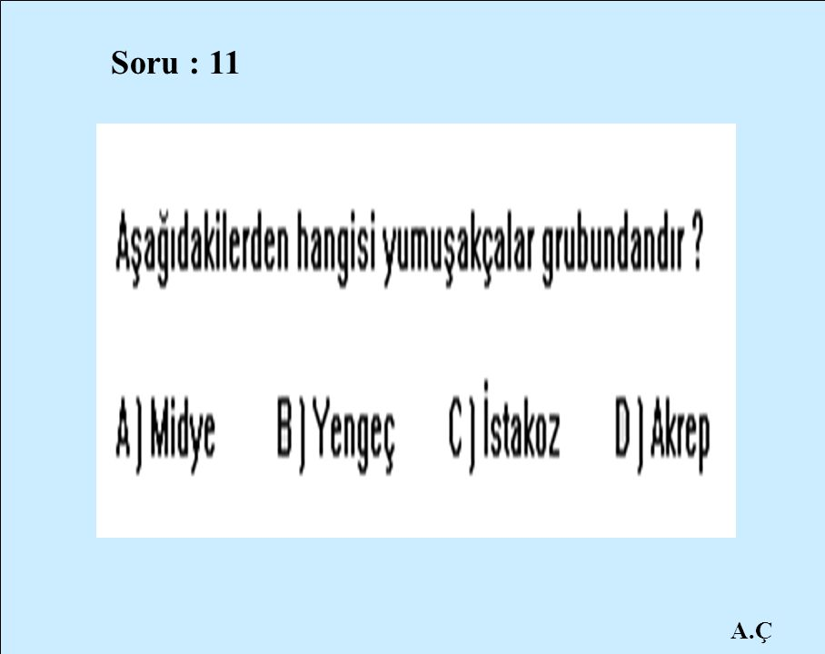Soru : 11 A.Ç