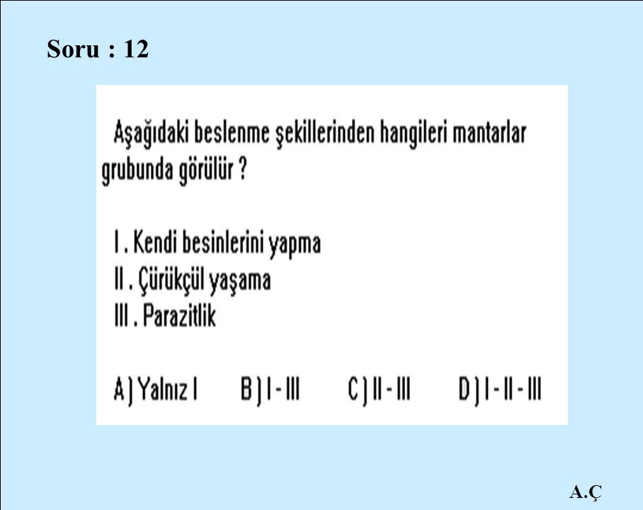 Soru : 12 A.Ç