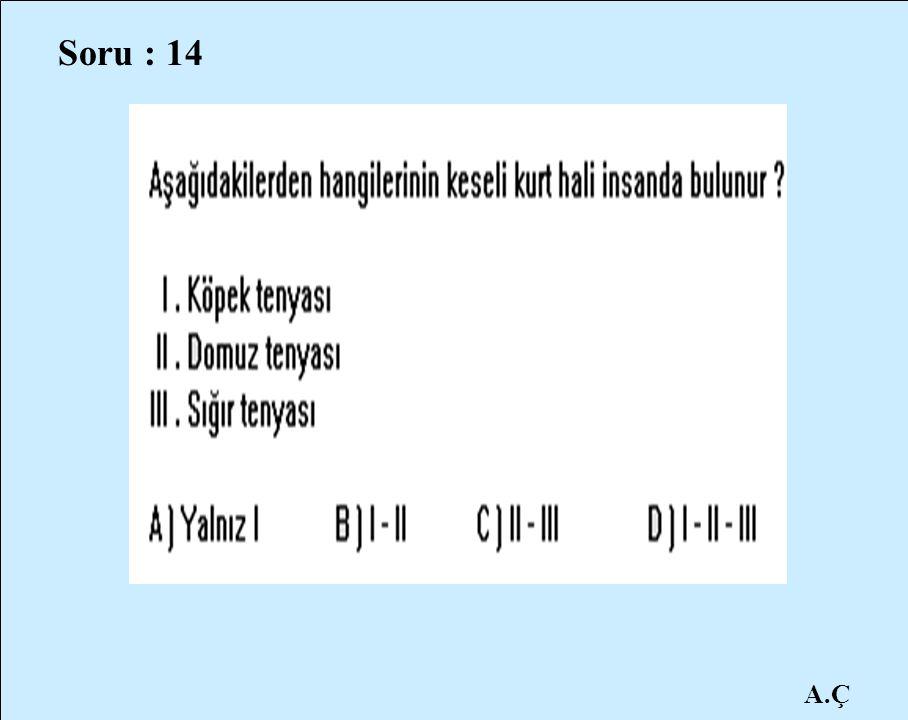 Soru : 14 A.Ç