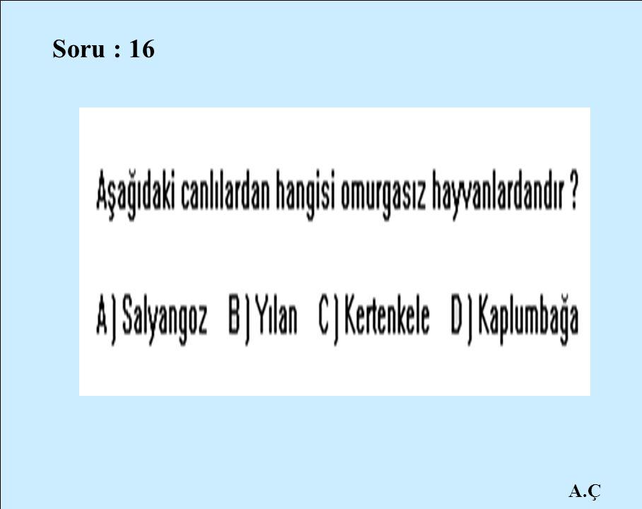 Soru : 16 A.Ç