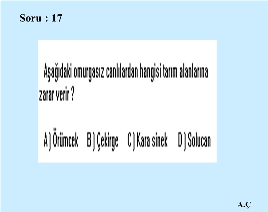 Soru : 17 A.Ç