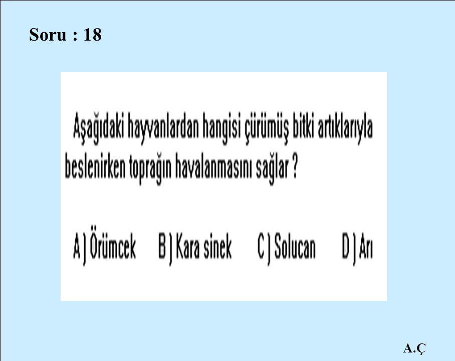 Soru : 18 A.Ç