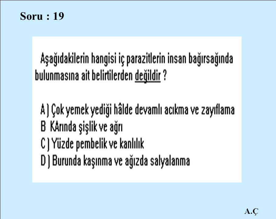 Soru : 19 A.Ç
