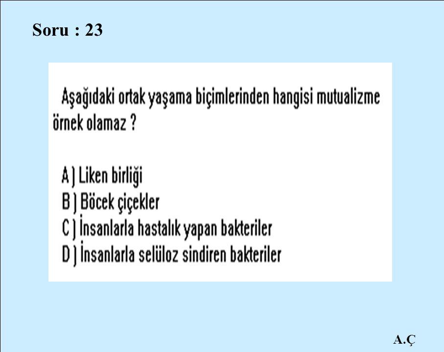 Soru : 23 A.Ç