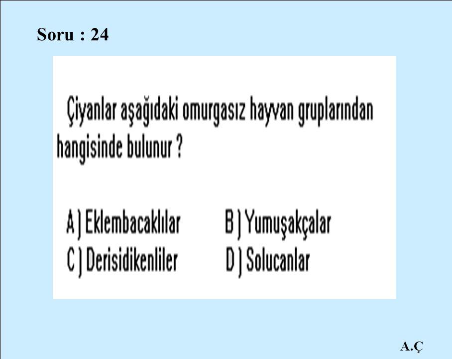 Soru : 24 A.Ç