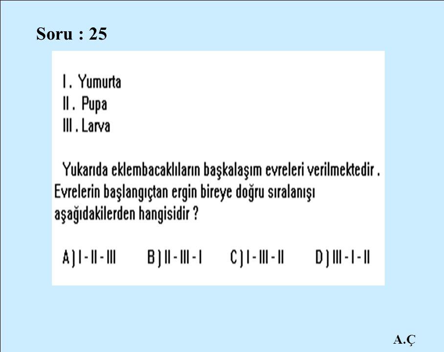 Soru : 25 A.Ç
